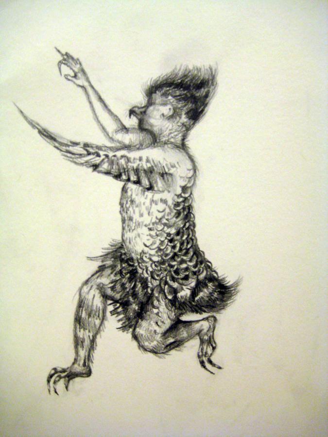 Filoplume 2- 11in x 14in- graphite drawing on bristol